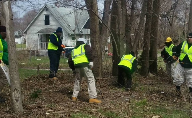 More trees to line Detroit streets thanks to The Greening of Detroit and volunteers