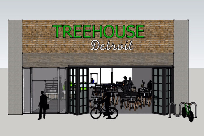 Livernois-Six Mile neighborhood needs votes to plant 'tree house'