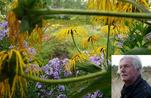 Rock star designer Piet Oudolf to share his master plan for Belle Isle public garden