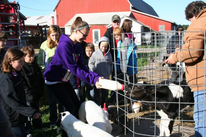 Six Farm Tours to Do This Fall
